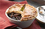 Chestnut Bourguignonne Pie