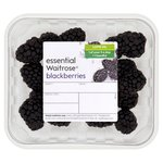 WR Blackberries