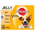 Pedigree Pouches Meat Selection in Jelly