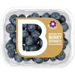 BerryWorld Blueberries