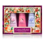 Crabtree & Evelyn Floral Hand Therapy Gift Box