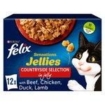Felix Sensations Jellies Cat Food Meat